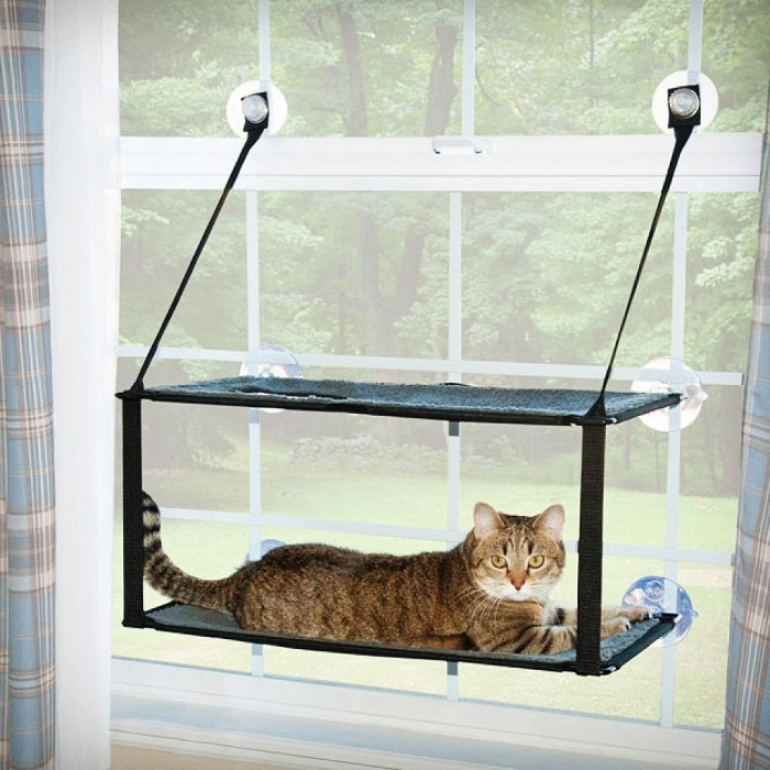 double window kitty cat perch hammock  rh   cozycatfurniture