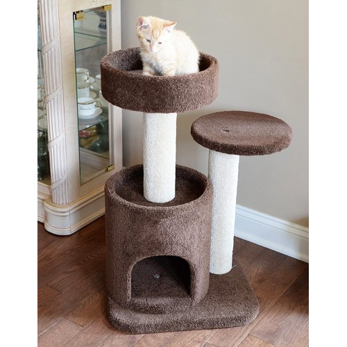 Small Cat Condo With Bed Perch